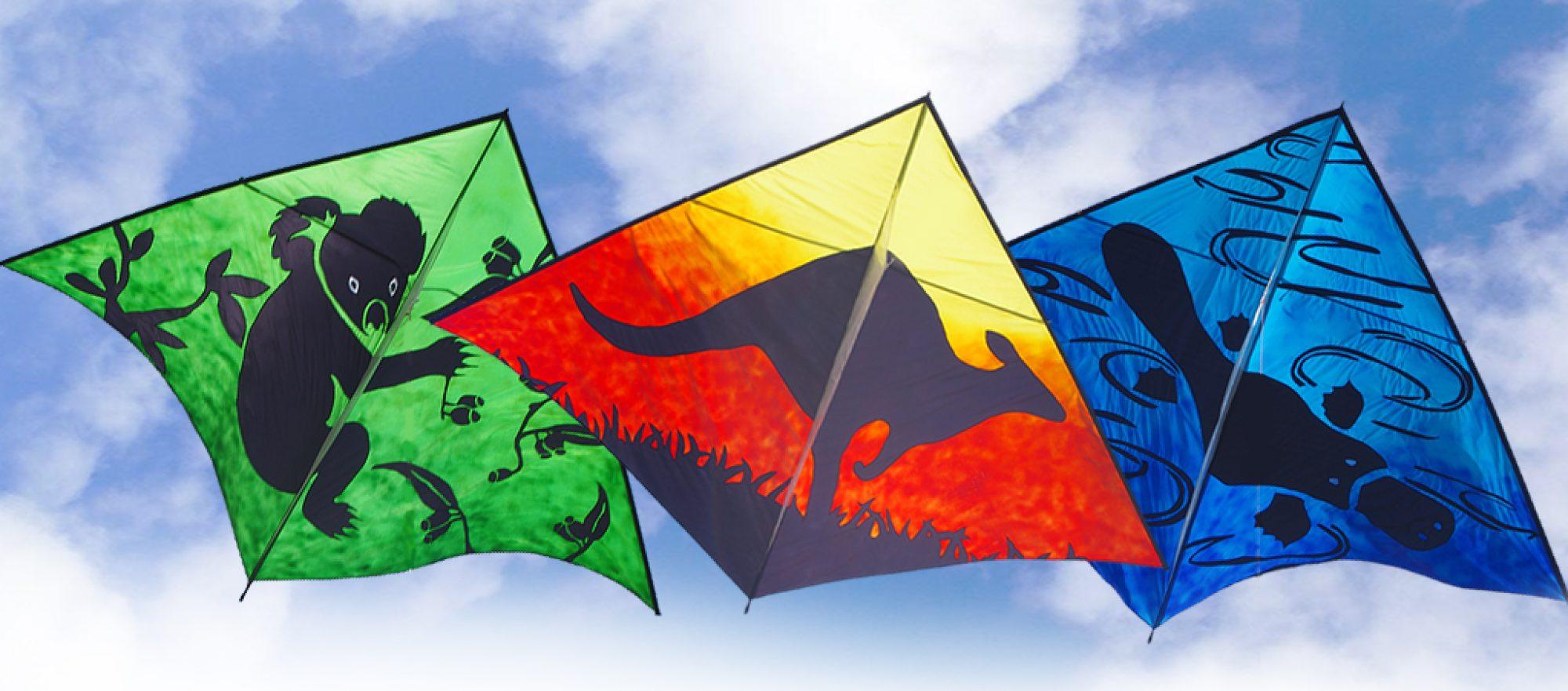 Kites 4 Kids